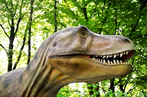 Neem een kijkje achter schermen tijdens DinoAdventures